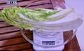野菜350グラムは、白菜5分の1玉。(31.1.25)