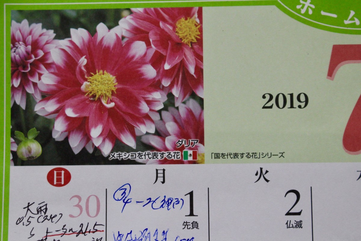 f:id:yatsugatake:20190701075013j:plain