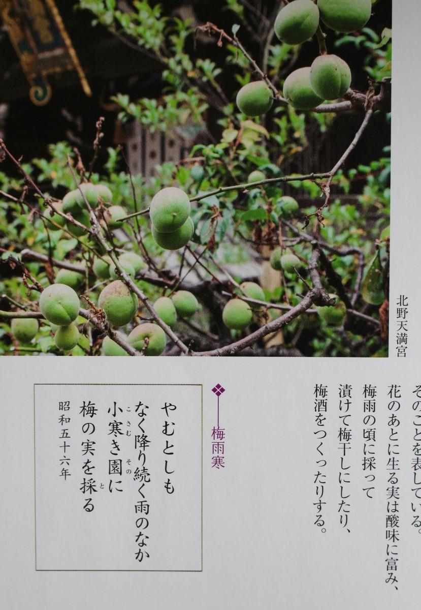 f:id:yatsugatake:20190706100458j:plain