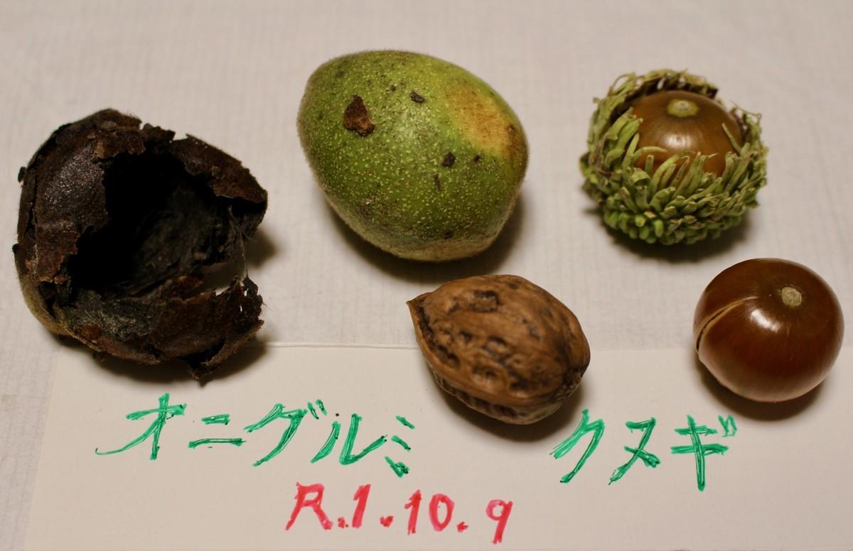 f:id:yatsugatake:20191009173939j:plain