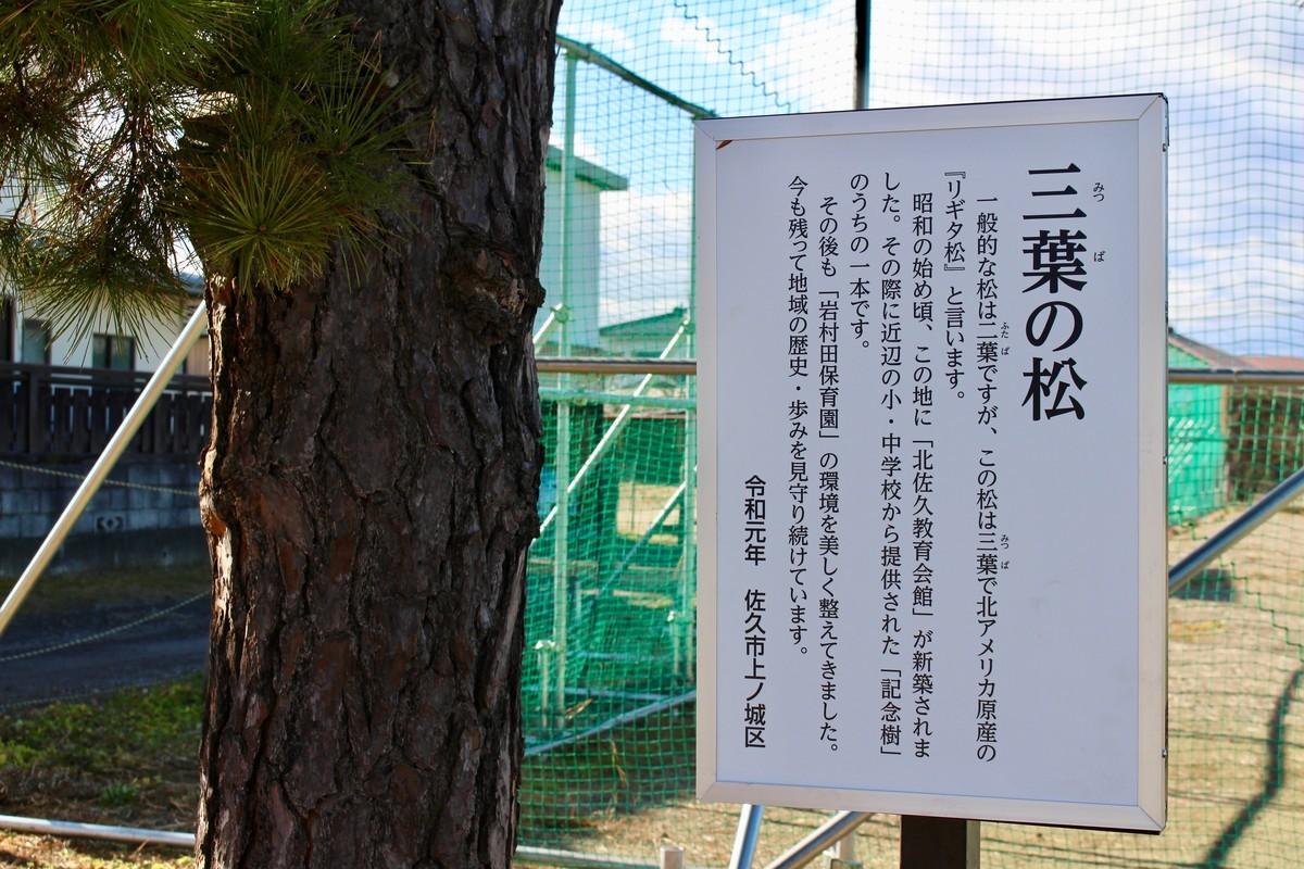 f:id:yatsugatake:20191220122916j:plain