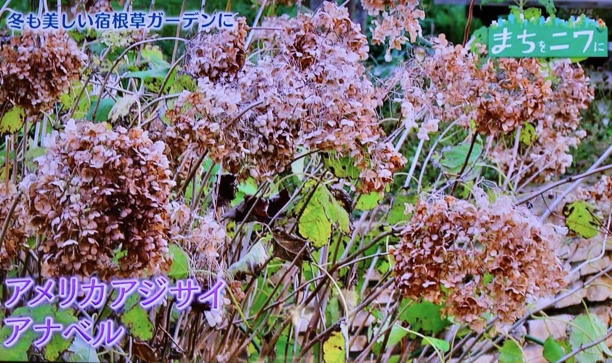 f:id:yatsugatake:20200119084043j:plain