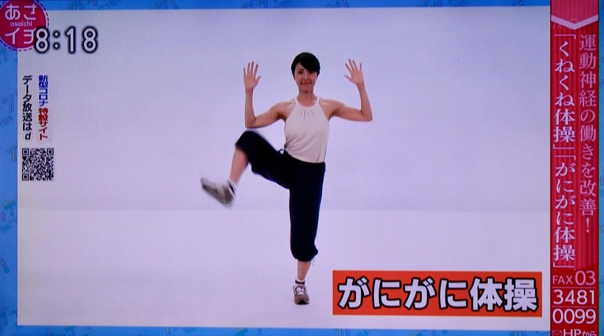 f:id:yatsugatake:20200327081936j:plain