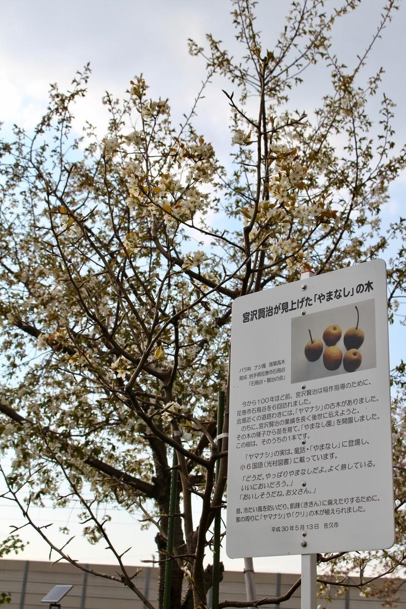 f:id:yatsugatake:20200428163825j:plain