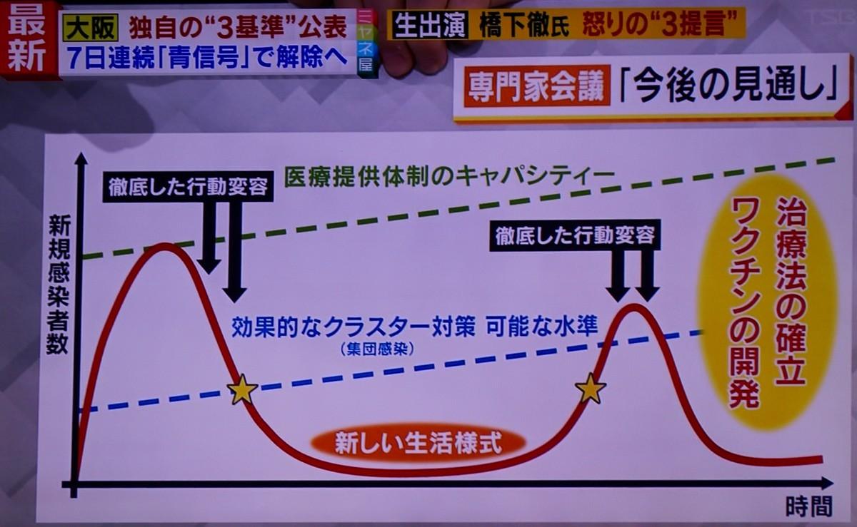 f:id:yatsugatake:20200506143836j:plain