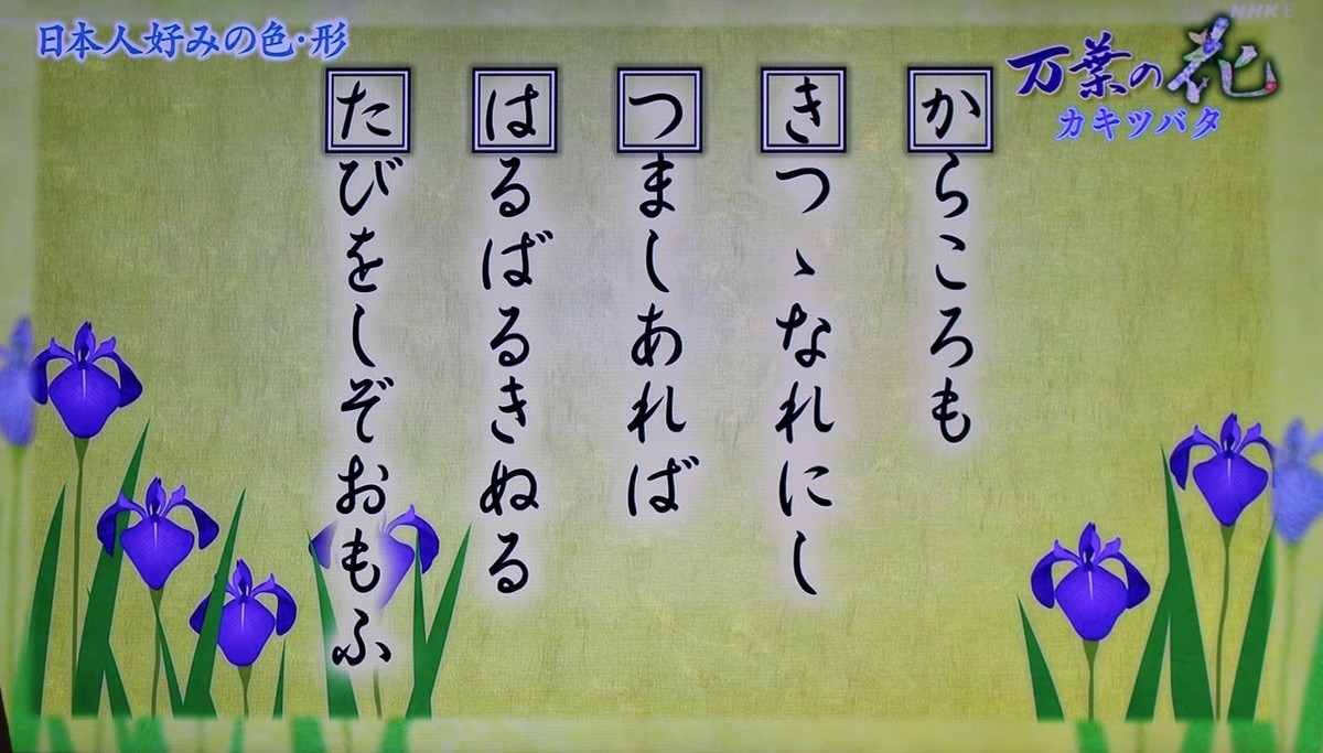 f:id:yatsugatake:20200531084729j:plain