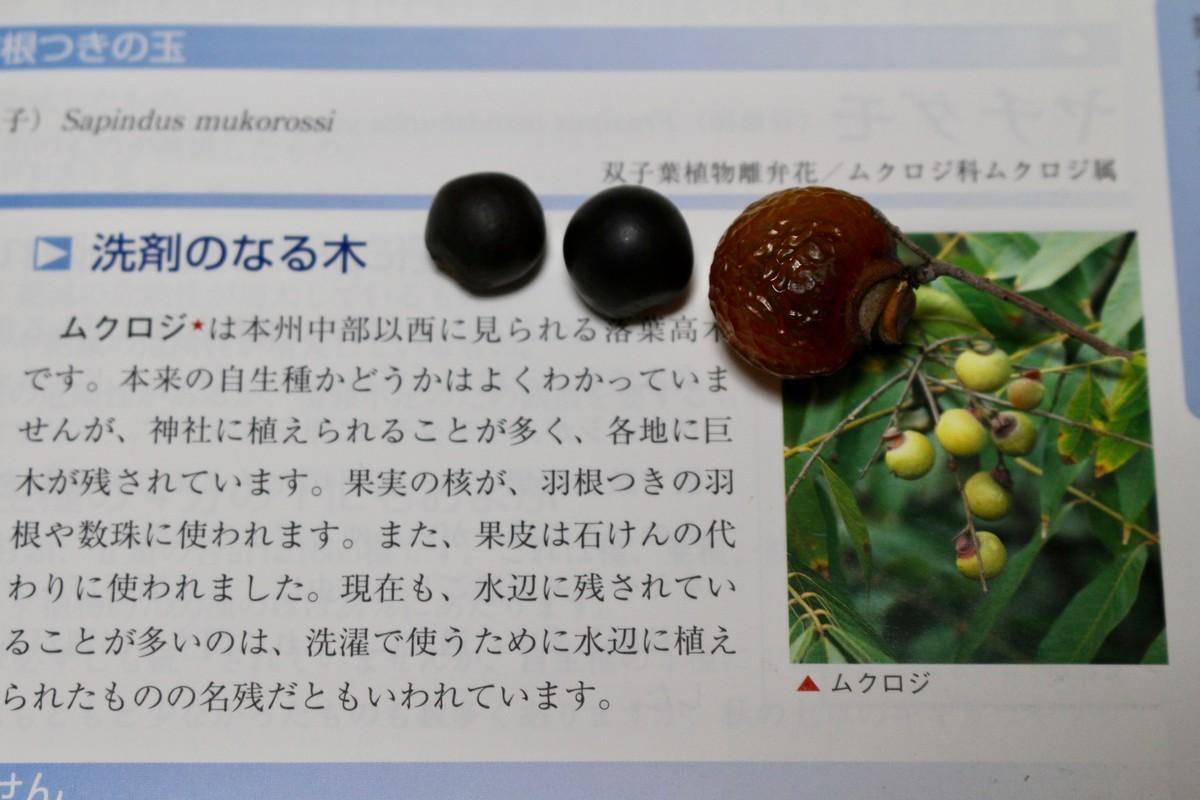 f:id:yatsugatake:20200601201428j:plain
