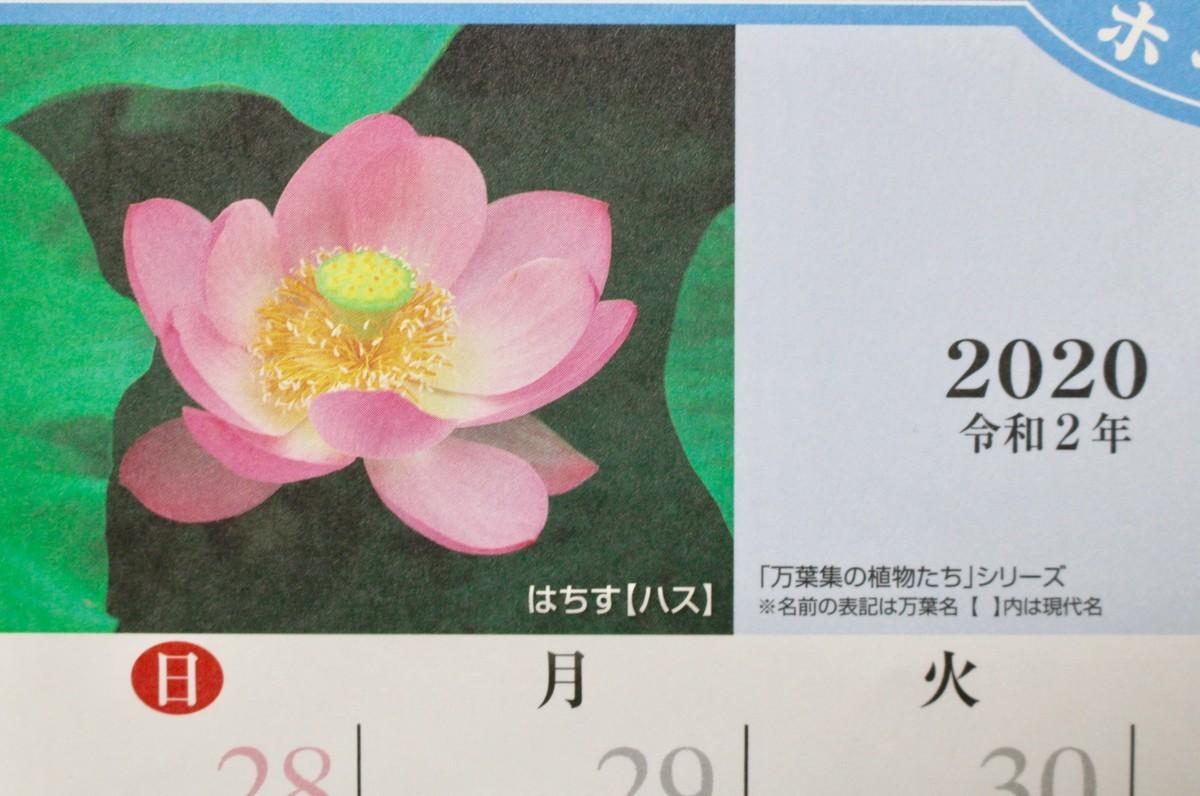 f:id:yatsugatake:20200701182603j:plain