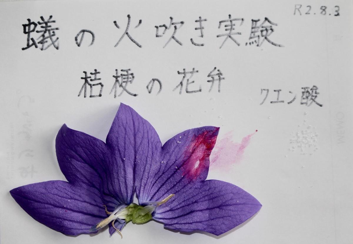 f:id:yatsugatake:20200803111242j:plain