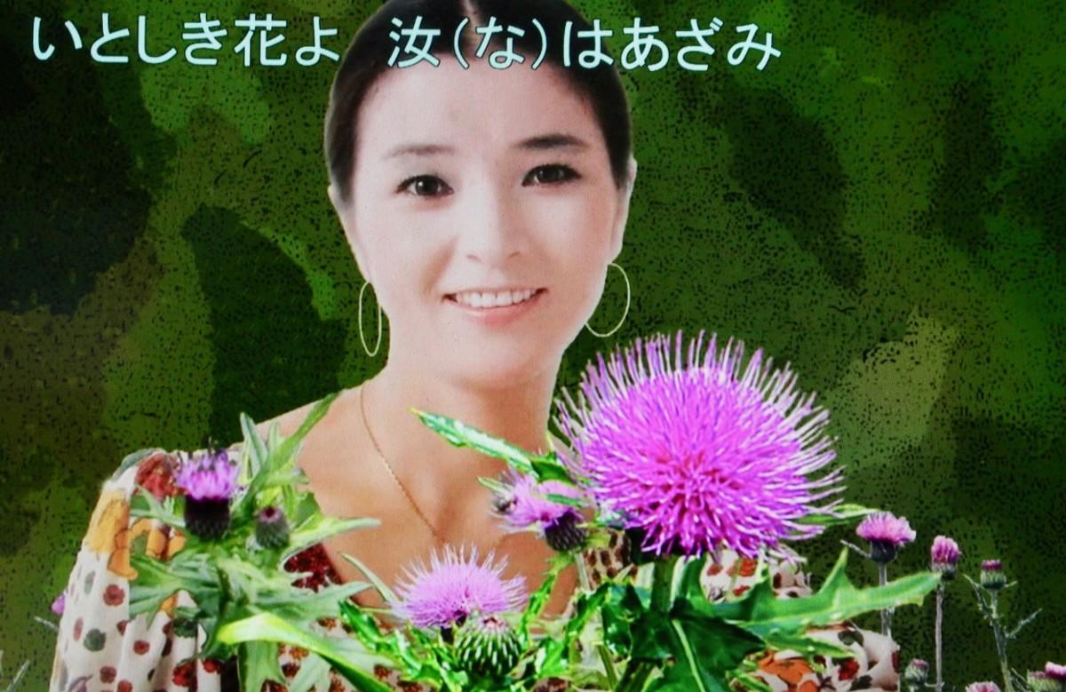 f:id:yatsugatake:20200914114825j:plain