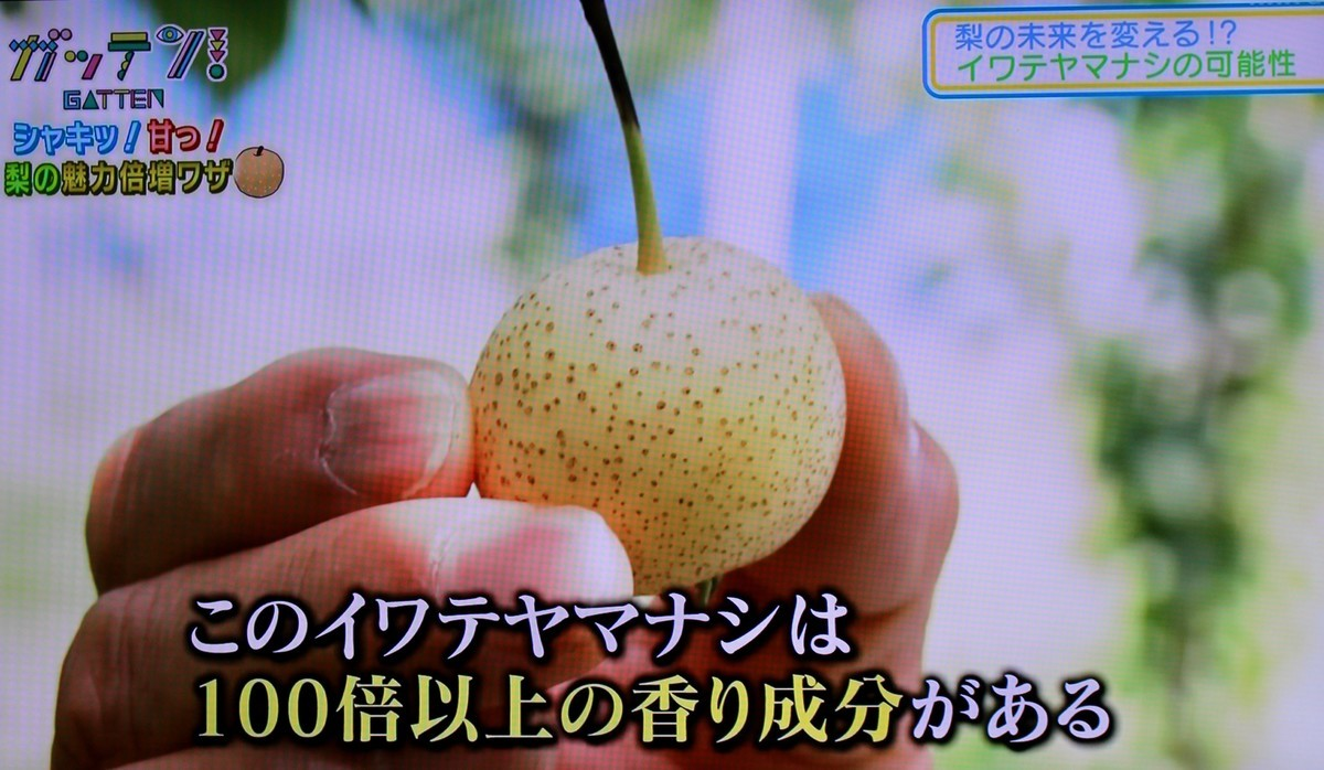 f:id:yatsugatake:20200923201653j:plain