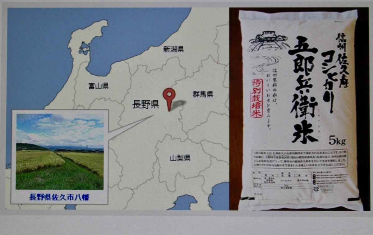 f:id:yatsugatake:20201022105417j:plain