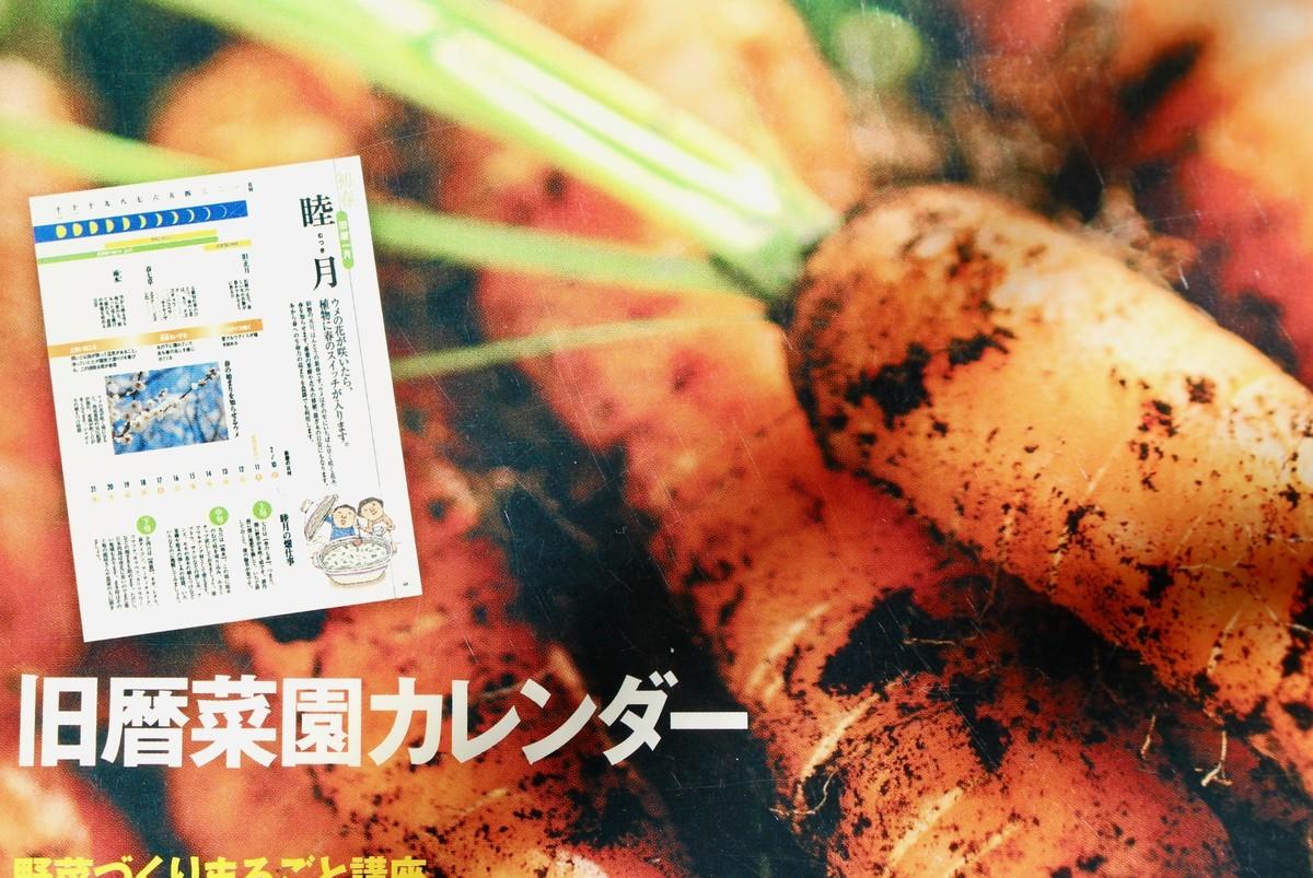 f:id:yatsugatake:20210113105527j:plain