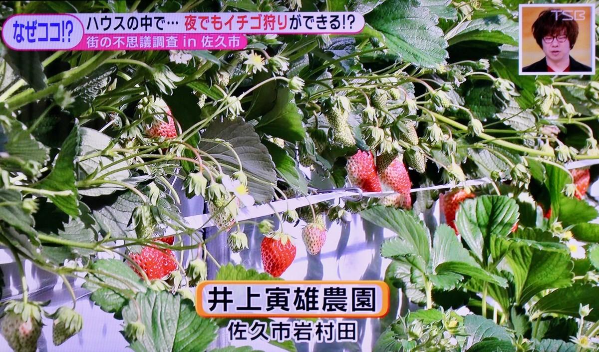 f:id:yatsugatake:20210119161215j:plain