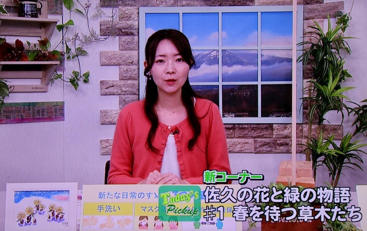 f:id:yatsugatake:20210301181239j:plain