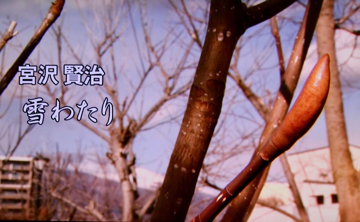 f:id:yatsugatake:20210301181714j:plain