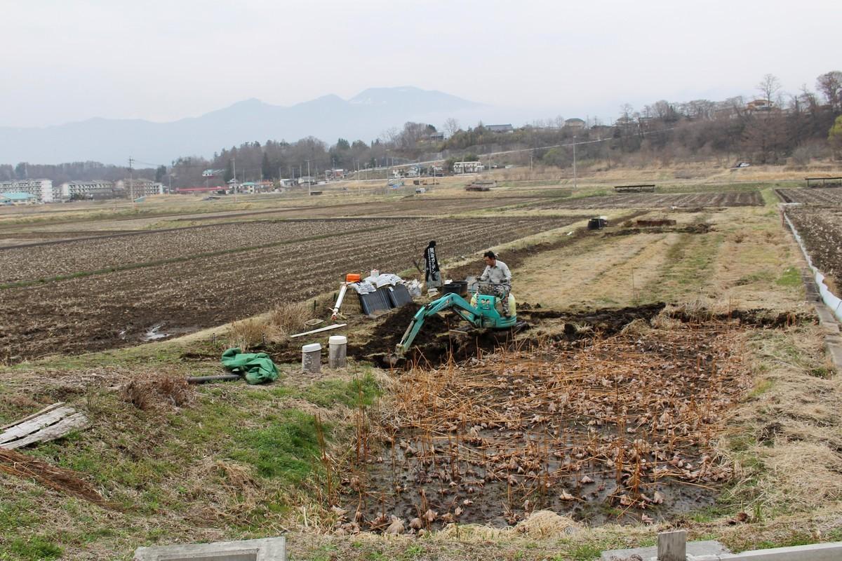 f:id:yatsugatake:20210330151027j:plain
