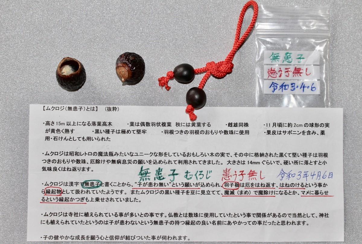 f:id:yatsugatake:20210406144759j:plain