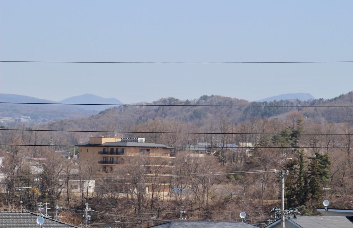 f:id:yatsugatake:20210410095240j:plain