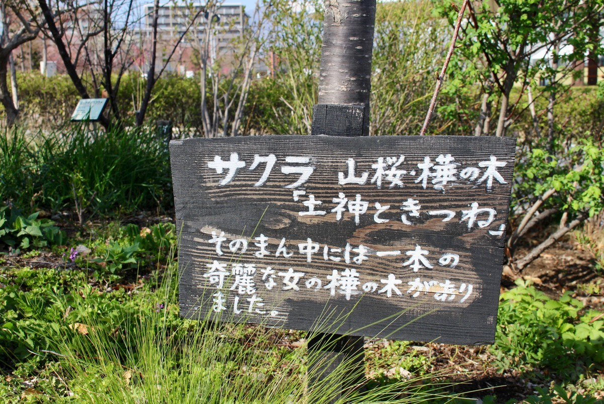 f:id:yatsugatake:20210420145953j:plain