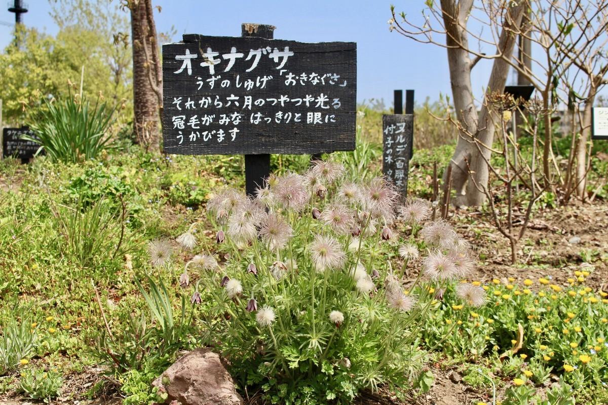f:id:yatsugatake:20210504101716j:plain