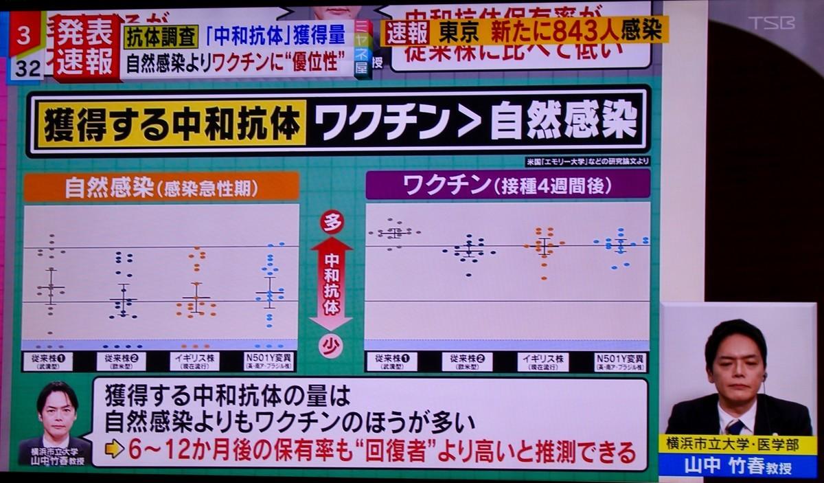 f:id:yatsugatake:20210520153903j:plain