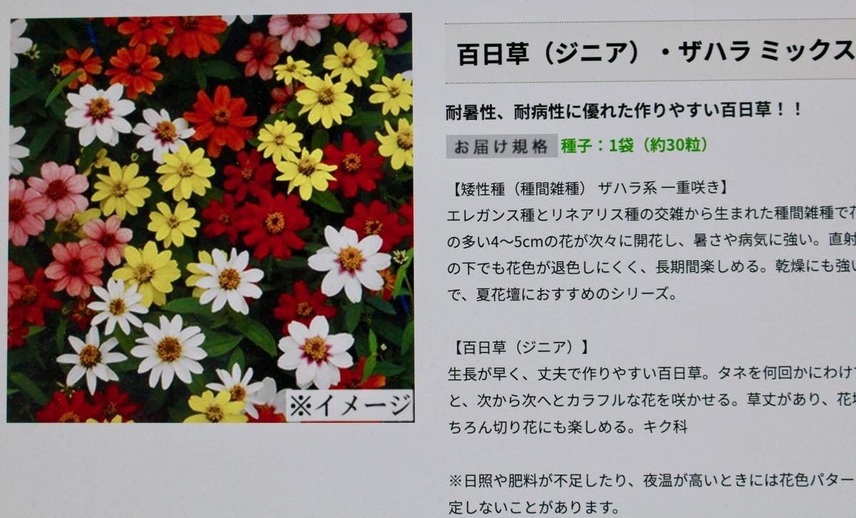 f:id:yatsugatake:20210531172835j:plain