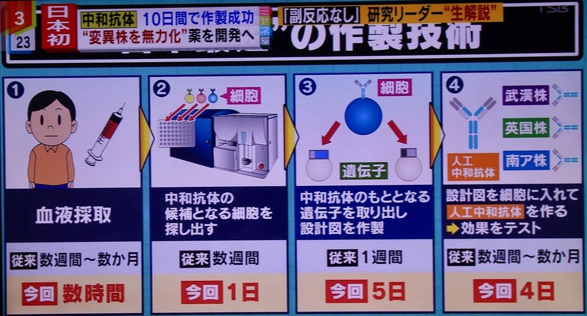 f:id:yatsugatake:20210602153059j:plain