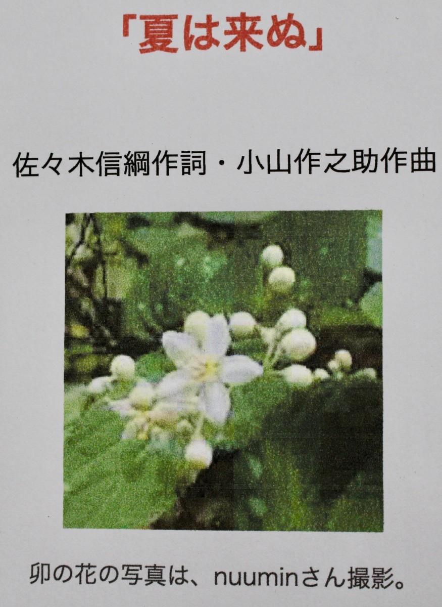 f:id:yatsugatake:20210604172721j:plain