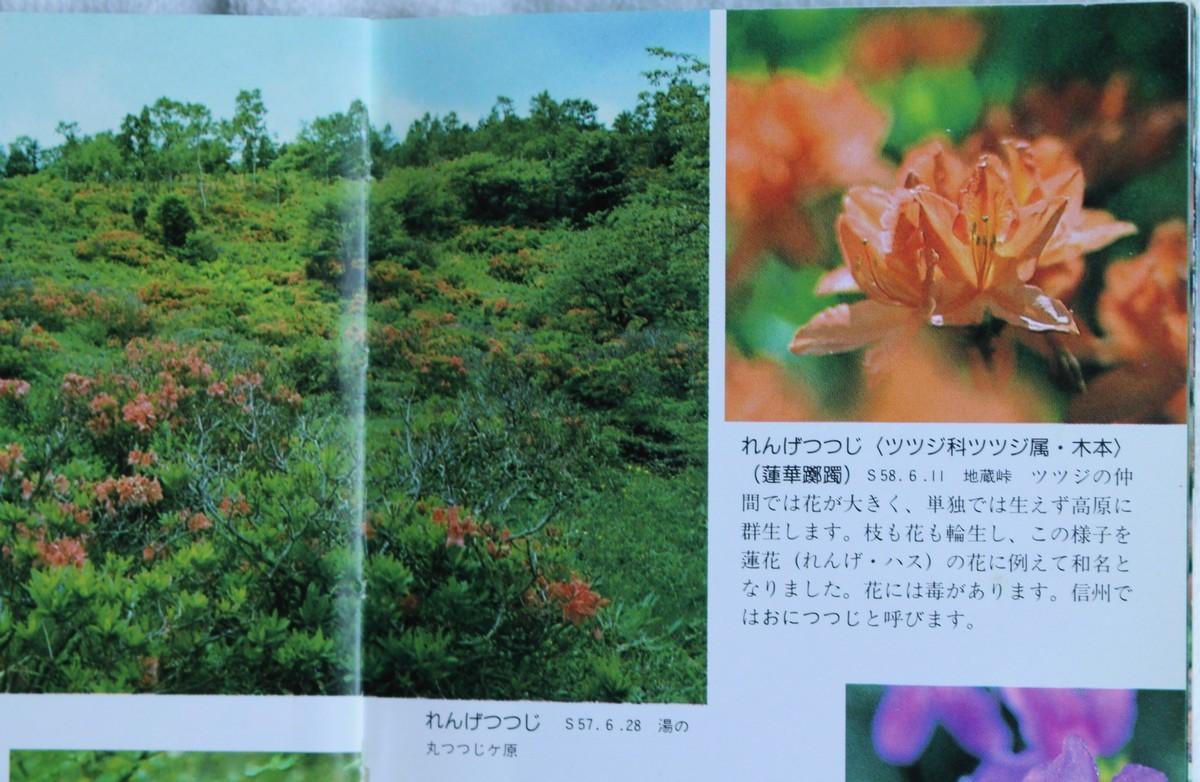 f:id:yatsugatake:20210610170136j:plain