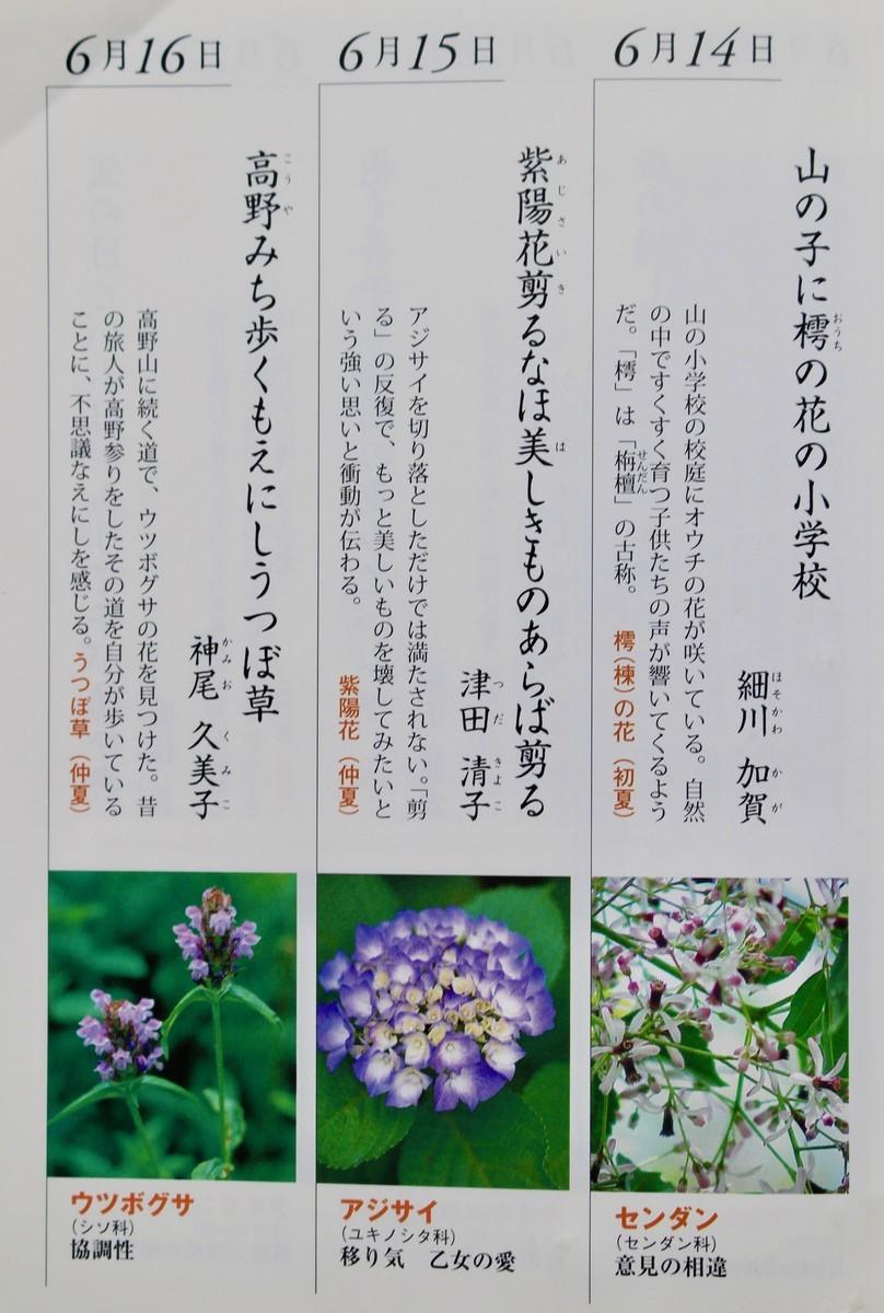 f:id:yatsugatake:20210616141016j:plain
