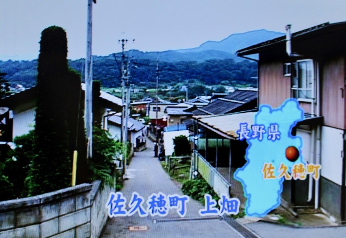 f:id:yatsugatake:20210801194918j:plain