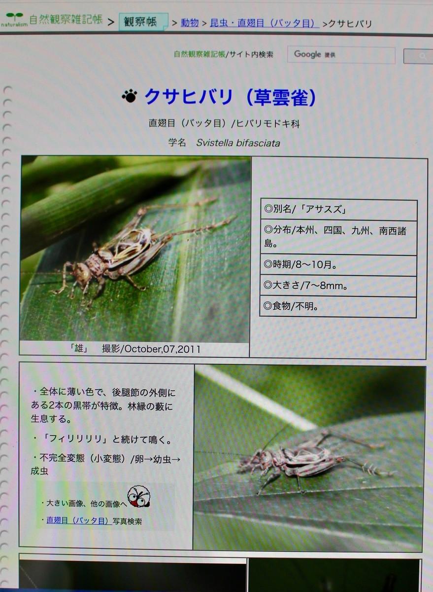f:id:yatsugatake:20210919132354j:plain