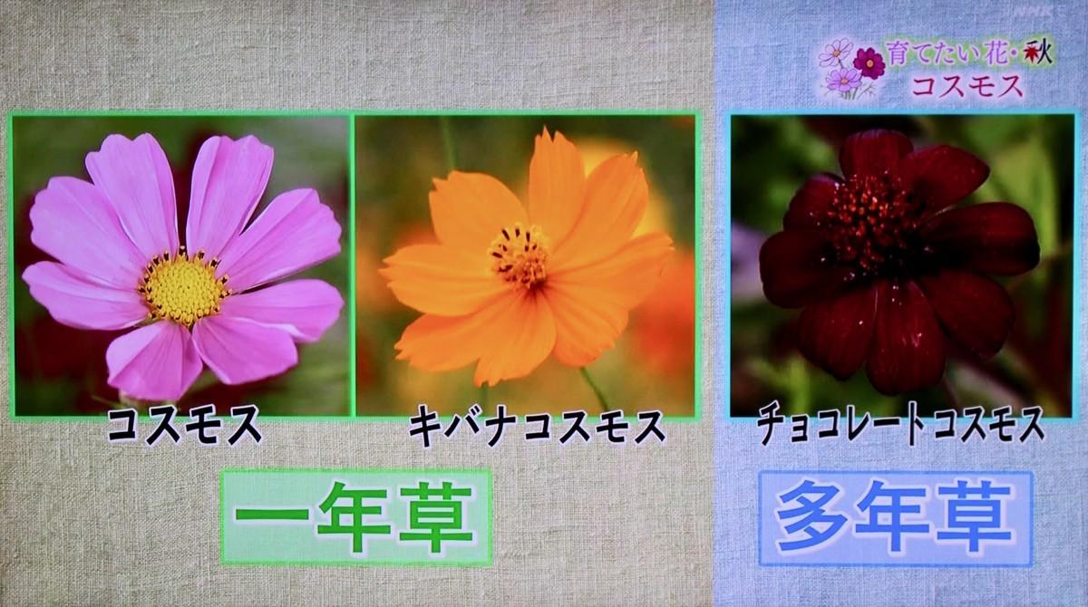 f:id:yatsugatake:20210926084112j:plain