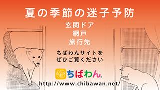 f:id:yawaraka-koinu:20170723220143j:plain