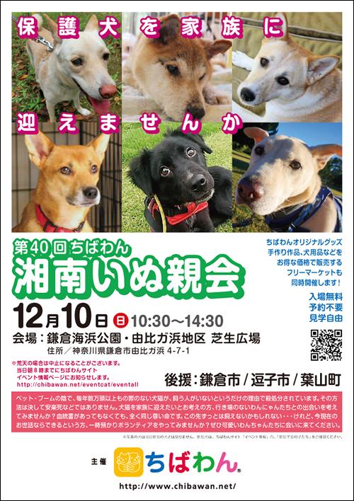 f:id:yawaraka-koinu:20171127184334j:plain