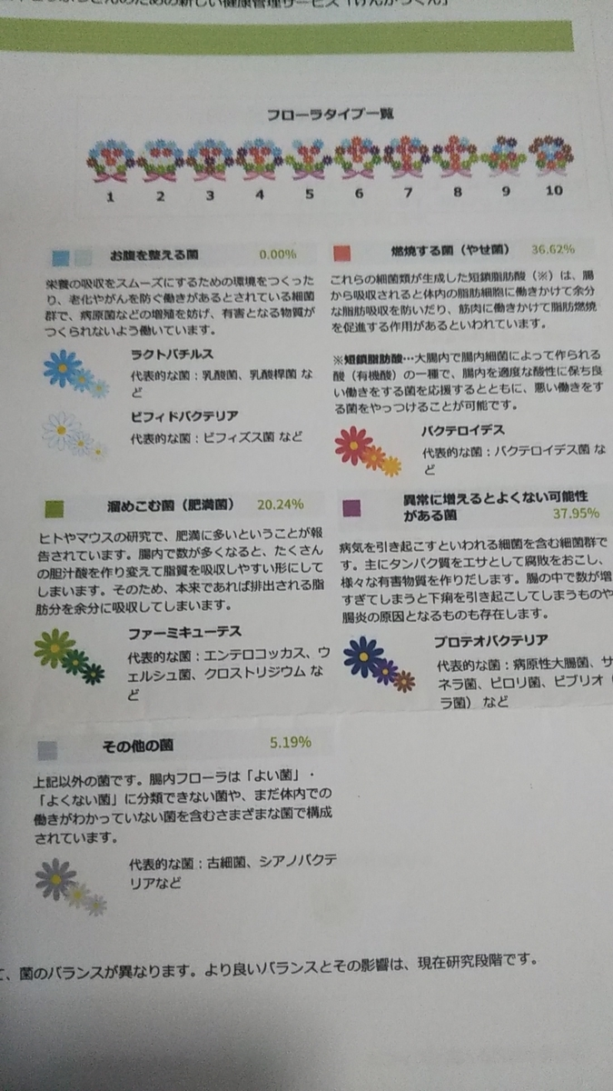 f:id:yawaraka-koinu:20190905221912j:plain
