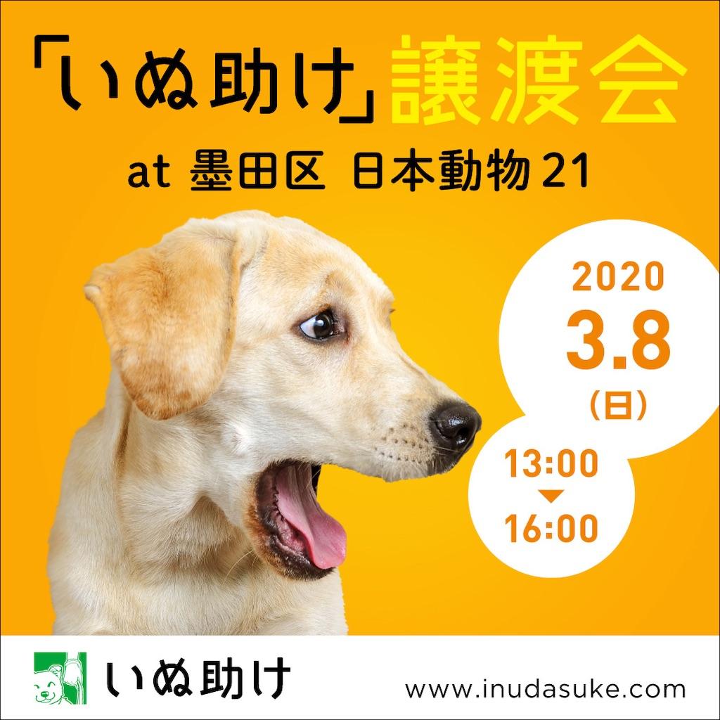 f:id:yawaraka-koinu:20200224082416j:image