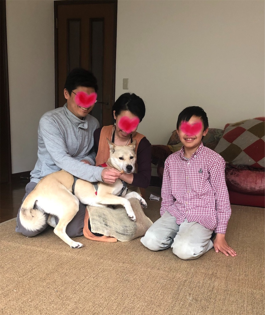f:id:yawaraka-koinu:20200512213307j:image