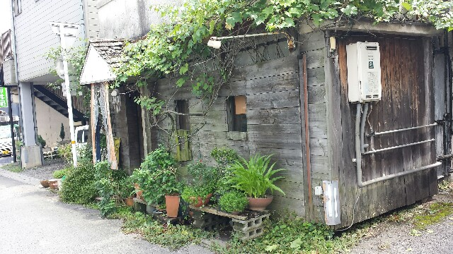 f:id:yawarakawakadori:20160905225641j:image