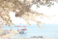 水天宮からの景色