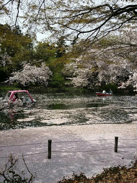 f:id:yayoi-ozawa:20170413204419j:image