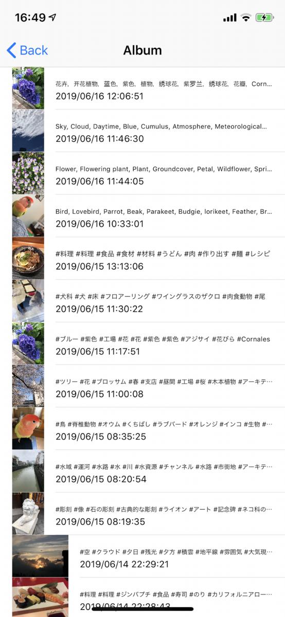 f:id:yayoi-taka:20190619054220p:plain