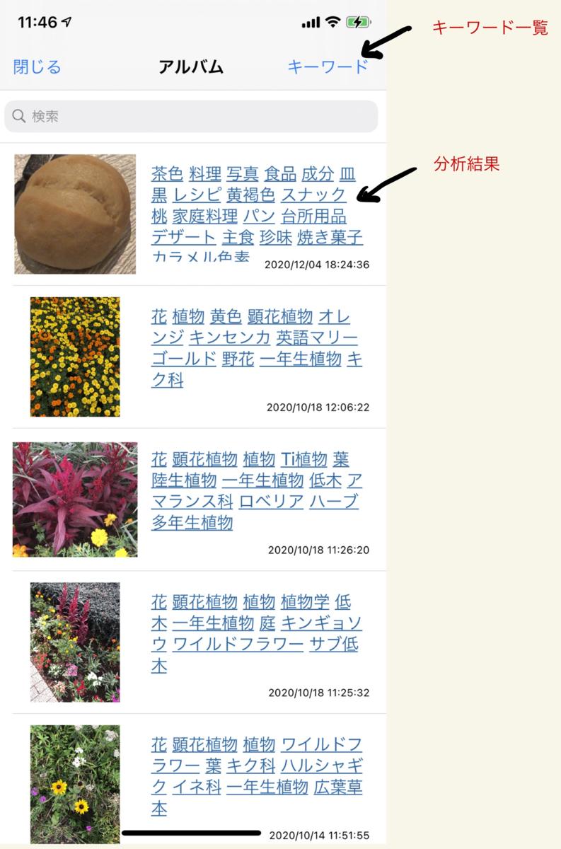f:id:yayoi-taka:20201220135715p:plain