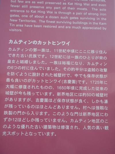 f:id:yayoi_international:20110126213653j:image