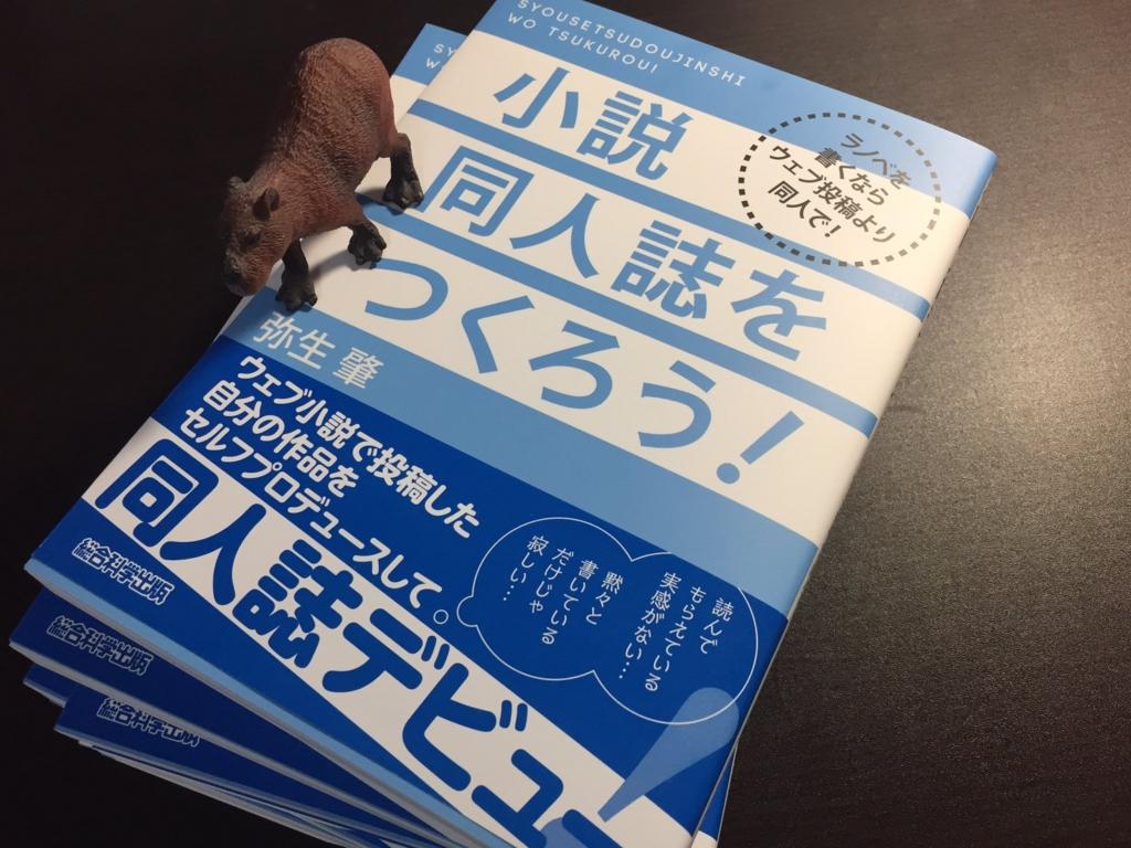 f:id:yayoihajime:20170520225851j:plain