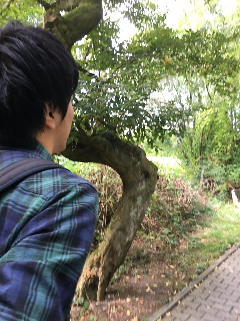 f:id:yazuyayazuya777:20180913174129j:plain