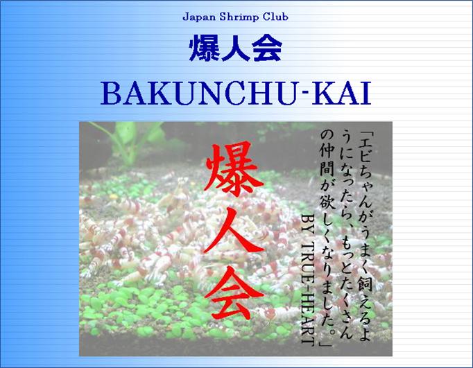f:id:yebikichi-aqua:20201028112435p:plain