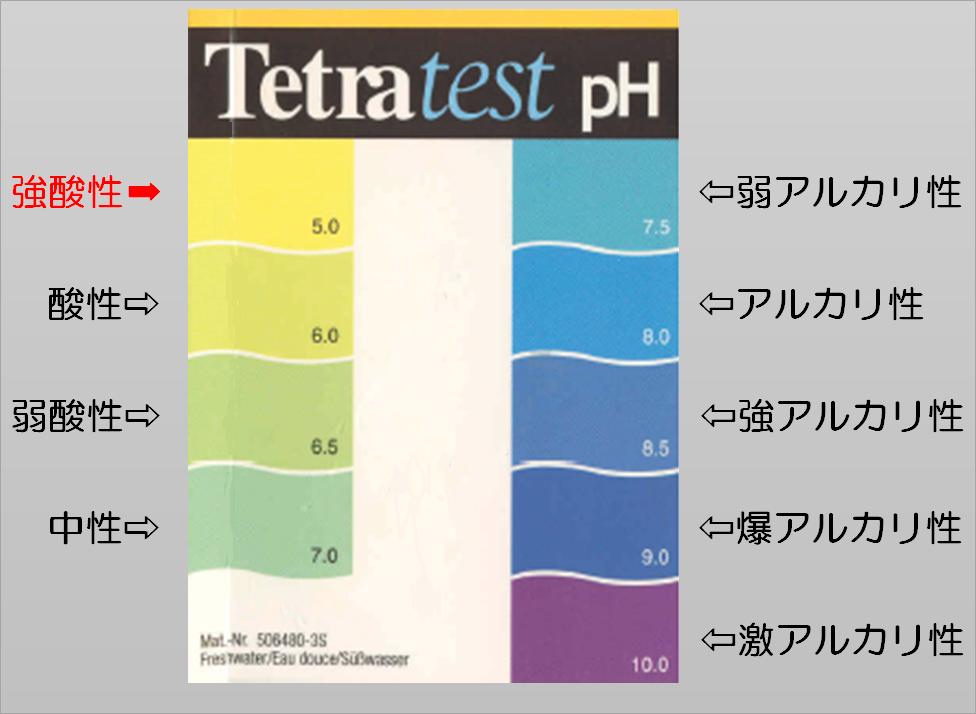 f:id:yebikichi-aqua:20201218104913p:plain
