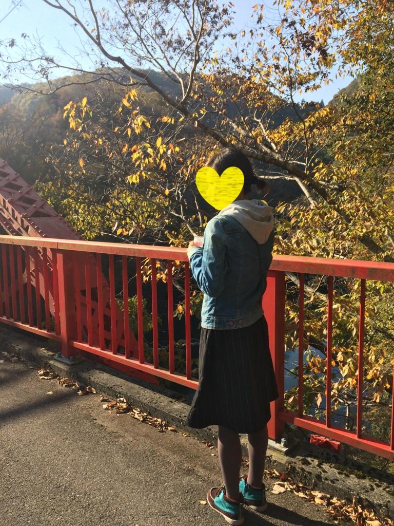 f:id:yellow84hate:20161129175636j:plain